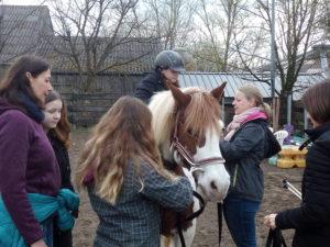 Pony mit Klienten